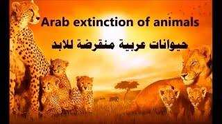 حيوانات عربية منقرضة للابد والباقية في خطر