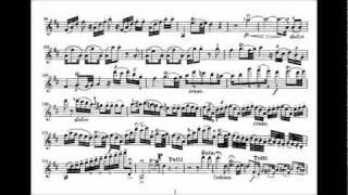 Mozart, Wolfgang A. 2nd violin concerto KV 211