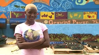 Urban Farms Growing Healthy Food, Opportunity on CHA Land