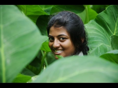 Kayal - Official Trailer | D. Imman | Anandhi, Chandran