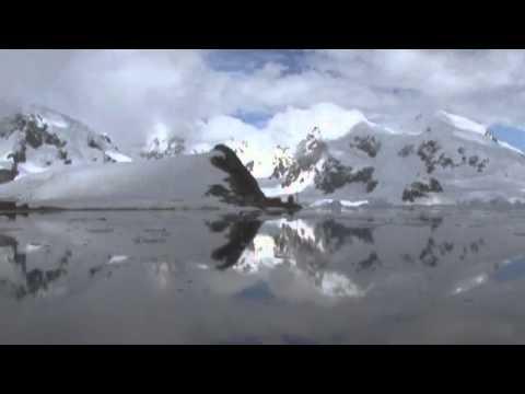 Ham radio Antarctica FT5YJ VP8DLM CE9XX 1