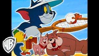 🔴Melhores momentos de Tom & Jerry 🇧🇷 | Coletânea de desenhos clássicos | WB Kids