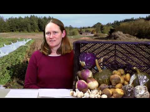 Community Supported Agriculture in Portland, Oregon