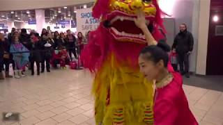 NYCCC LNY 2019 @ QUEENS PLACE MALL  Lion Dance