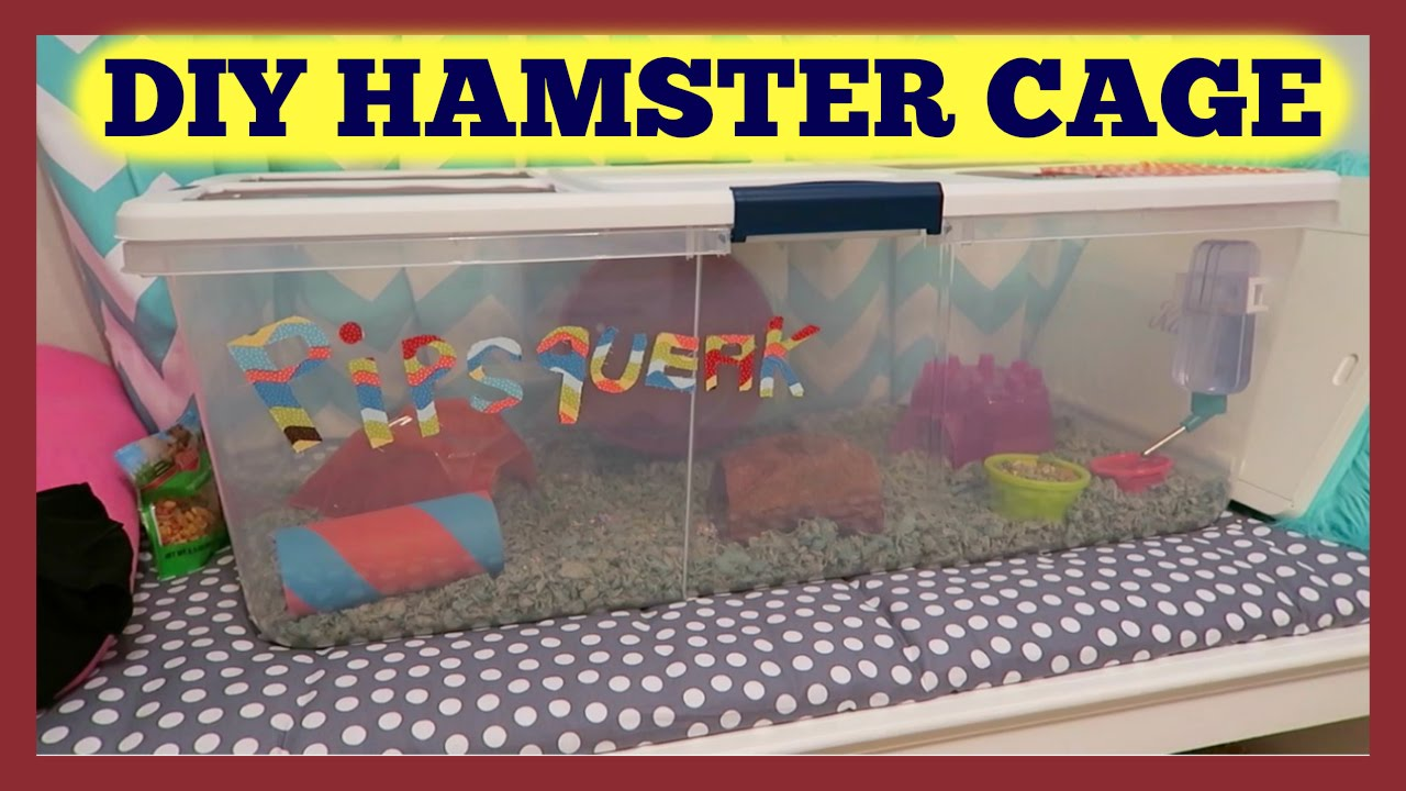 Family vlog rubbermaid container hamster cage youtube for How to build a hamster cage