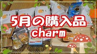 5月の購入品charm thumbnail