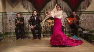 """""""La Noche de Sala Andaluza vol.29"""" - from DVD「ラ・ノーチェ・デ・サラ・アンダルーサ Vol.29」"""