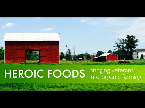 Profile of Heroic Food - military veterans working in sustainable agriculture