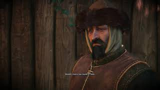 The Witcher 3 In Wolf's Clothing