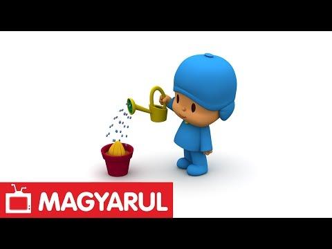 Pocoyo: The Seed (S02E27)