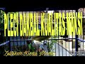 Pleci Dakbal Kualitas Maksi  Mp3 - Mp4 Download