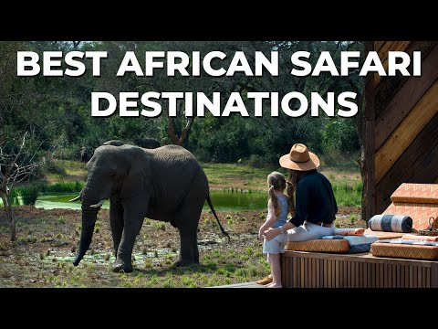 Discover The Best African Safari Destinations