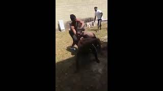 SLAUGHTER GANG ATLANTA Blood Vs PDE Crips!! 21 Savage Breaks Up FIGHT!!!