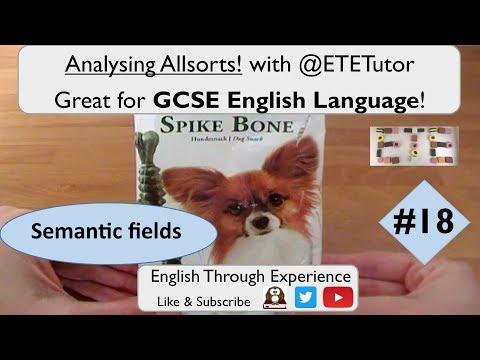 GCSE English Language - Analysing Allsorts with ETETutor! Spike Bone Semantic Fields #18