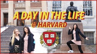🏫A Day in the Life at Harvard University 2019 (+ Campus Tour!)   Katie Tracy