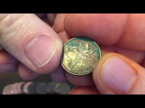 COOL FIND AND CANADIAN GEESE!  WHAAAAAT?  Low Budget Coin Roll Hunting Ep3