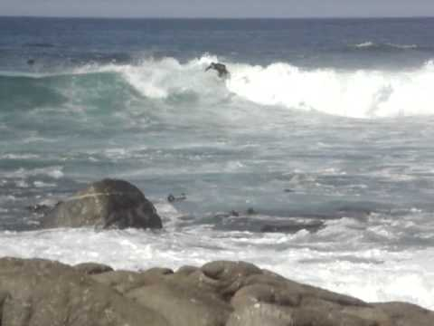 Surfing at Pebble Beach