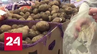 В магазинной картошке нашли тяжелые металлы - Россия 24