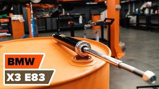 Înlocuire Telescop BMW X3: manual de intretinere si reparatii