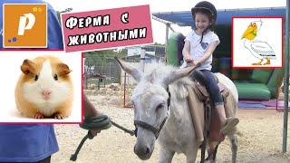 VLOG Ферма с животными - катаемся на ослике   Гладим животных   Надувные аттракционы