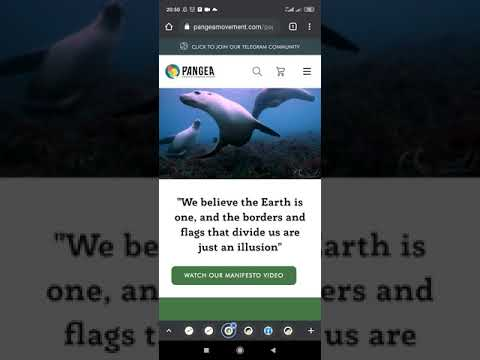 Pangea Ocean Cleanup Coin (POC) - Newest Gem, 100x Potential Crypto + How to buy  on Pancakeswap