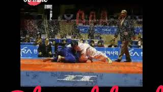 2008 Final Japan France Referee Dehnad  Judo World Championship Tokyo Japan International Judo Feder