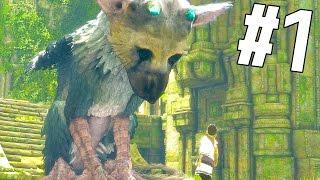 一人と一匹の冒険が今始まる・・・! - 人喰いの大鷲トリコ 実況 - Part1 thumbnail
