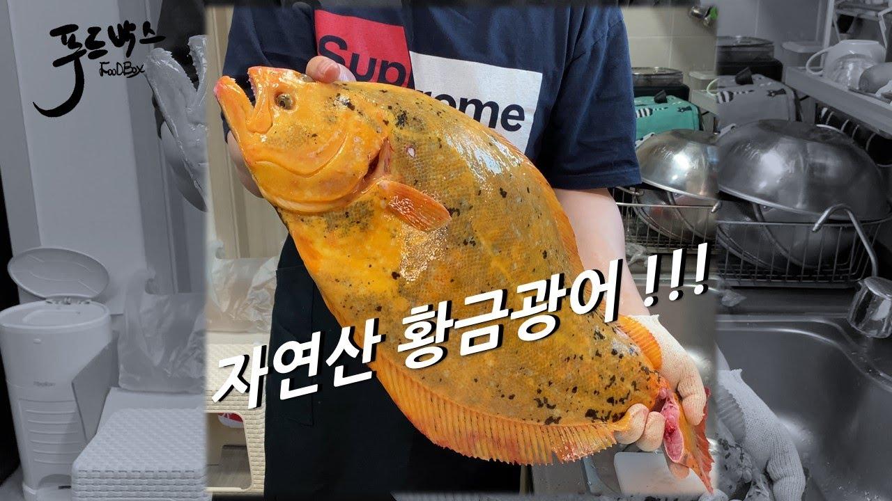자연산 황금광어-맛이 특별하다고???