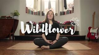 Seated Yoga for Home Isolation | Yoga for Calm