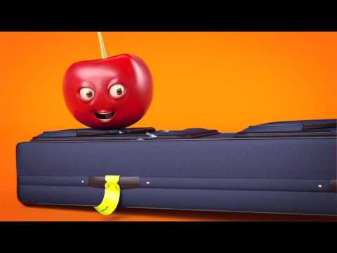 Travel with checked baggage on your holiday!