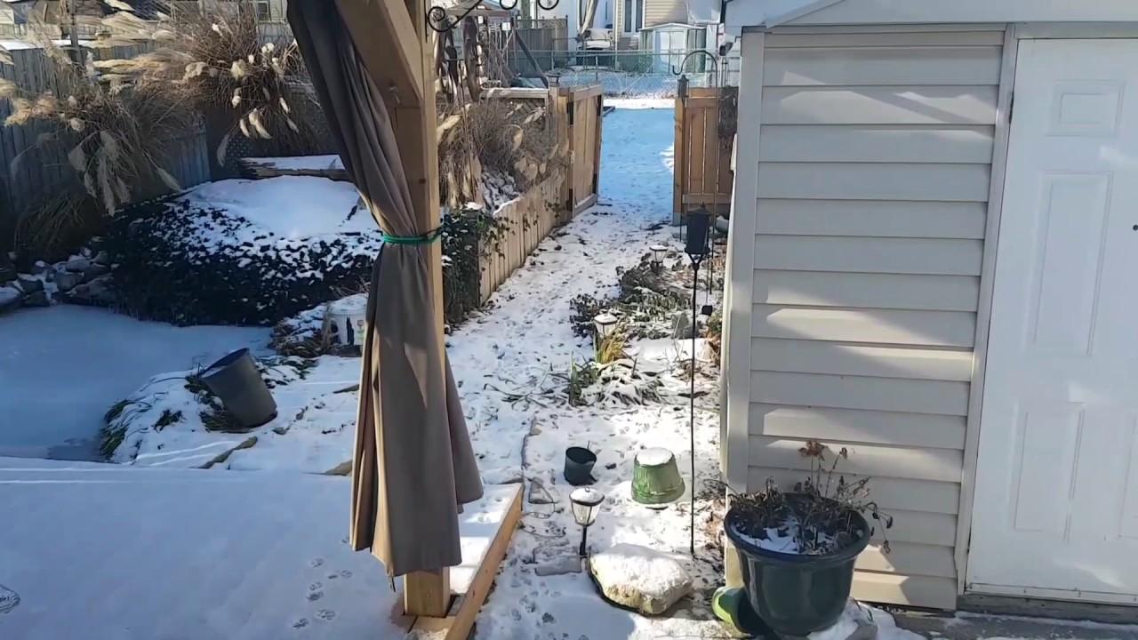 Koi pond frozen 2017 youtube for Koi pond freezing