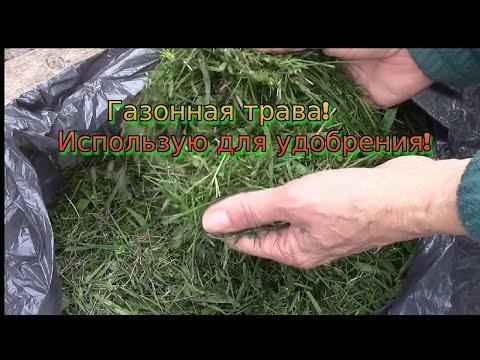 видео: Удобрение из срезанной газонной травы!