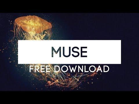 DREAMY WAVY BEAT 'MUSE'   Flow instrumental   Relaxed Instrumental   ImMorda