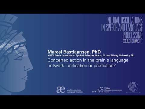 Neural Oscillations in Speech and Language Berlin 2017 -  Marcel Bastiaansen