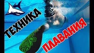 видео: Как исправить ТЕХНИКУ и научиться быстро ПЛАВАТЬ всего за месяц  Ошибки в плавании кролем