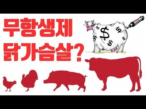무항생제 닭 가슴살?! 무항생제 식품이 권장되어야 하는 이유, 슈퍼박테리아