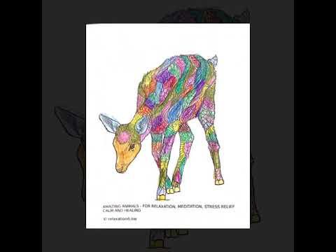 Antiestres Libro De Colorear Para Adultos Hermosos Animales