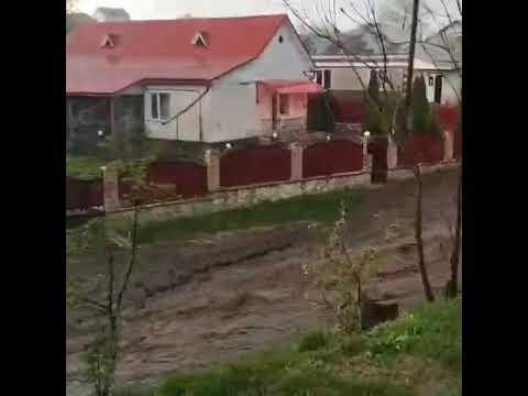 Повінь у селі Прошова (Тернопільський район) 28.04.2019