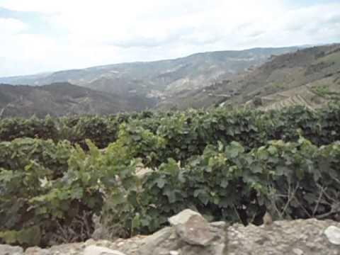 A chegar ao Castanheiro do Norte, vindo do Fiolhal, com Ribalonga lá em baixo