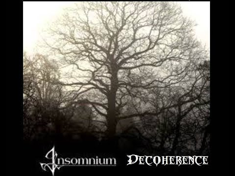 """Cover Of Insomnium's """"Decoherence"""""""