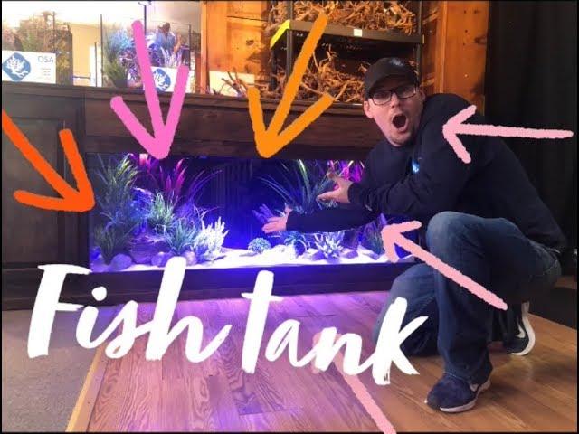 CHECK out this UNIQUE Aquarium!!! 🤯