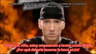 Скачать We Made You Eminem Subtitulada En Español