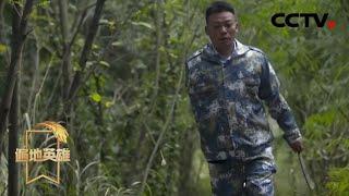 《遍地英雄》 20200403 独臂追梦人——刘毅|CCTV农业
