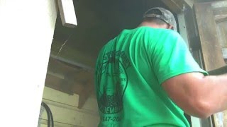 Bee removal from shed in La Villa, Tx by Luis Slayton of Bee Strong Honey part 2