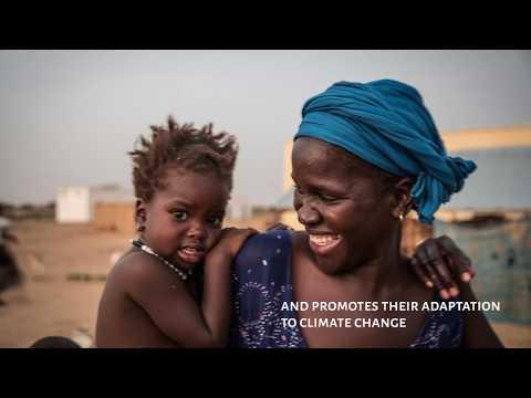 Diakré, the first Nubian Vault village in West Africa - 2018