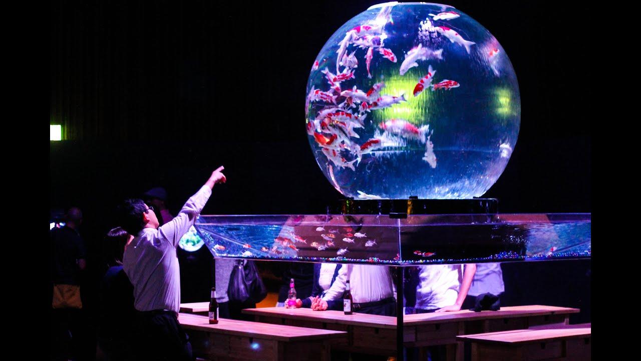 Tokyo 39 S 39 Art Aquarium 39 Youtube