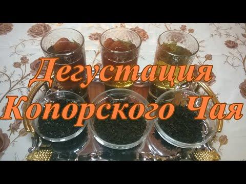 Рецепты приготовления копорского чая: как правильно