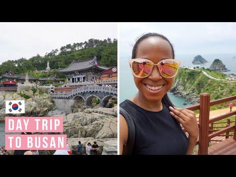 TRAVEL VLOG  // Day trip to Busan, South Korea