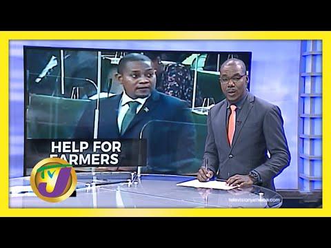 Gov't to Help Jamaican Farmers   TVJ News