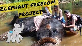 ✈ Vlog 3 - SRI LANKA ✈ Pinnawala
